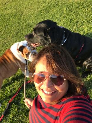 mipi w:dogs